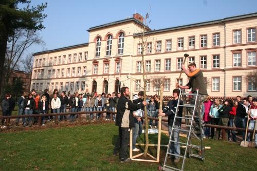 "Oberschule ""An der Mulde"""
