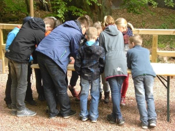 Schulklasse im Gelände beim Geocaching